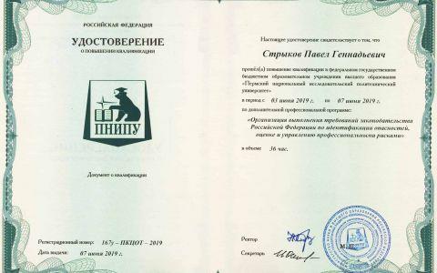 Удостоверение - Общее по проф. рискам (Стрыков П.Г.)